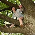 Girls climbing Hanging in trees Jungle gyms ETC